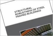 Structural robustness of steel framed buildings (P391)
